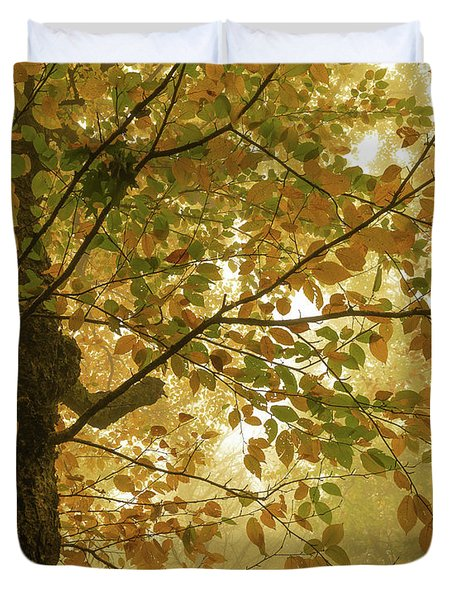 Yellow Fall Leaves - Blue Ridge Parkway Duvet Cover