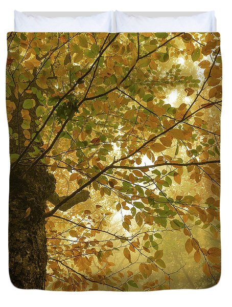 Yellow Fall Leaves - Blue Ridge Parkway Duvet Cover