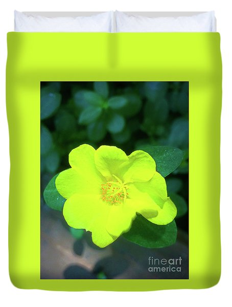 Yellow Hypericum - St Johns Wort Duvet Cover