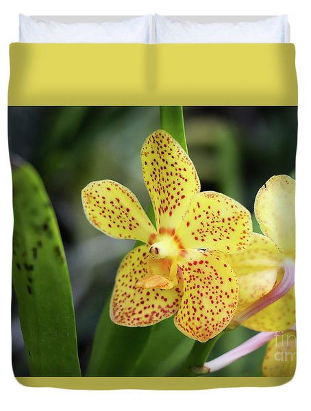 Yellow Spotted Orchids Duvet Cover