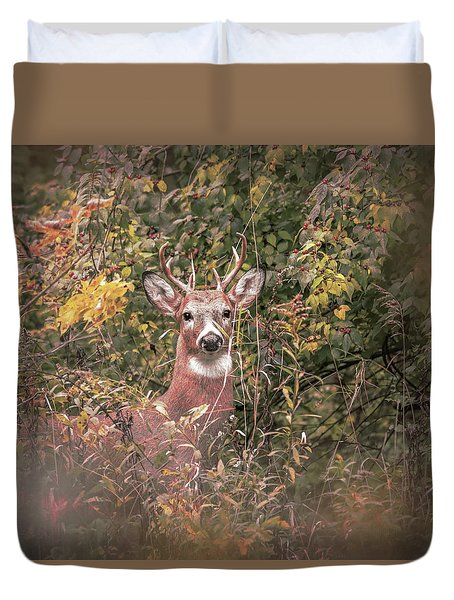 Duvet Cover featuring the photograph Young Buck Portrait by Dan Sproul