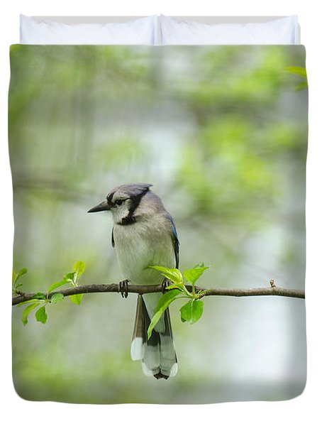 Young Jay Thinking Duvet Cover