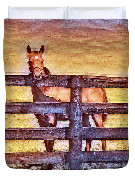 Young Kentucky Thoroughbred Duvet Cover