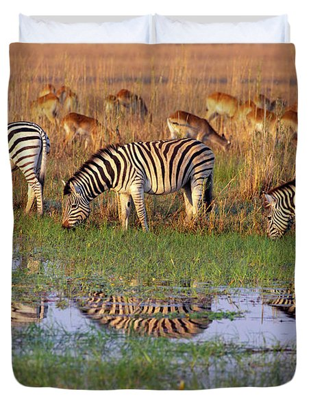 Zebras In Botswana Duvet Cover