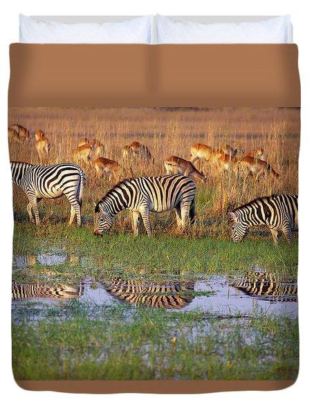 Zebras In Botswana Duvet Cover