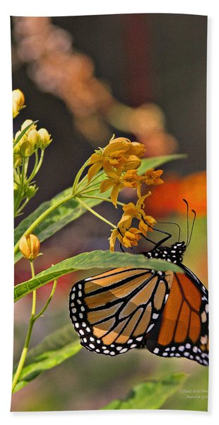 Clinging Butterfly Hand Towel