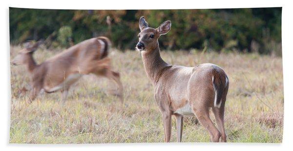 Deer At Paynes Prairie Bath Towel