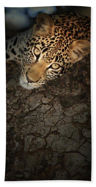 Leopard Portrait Bath Towel