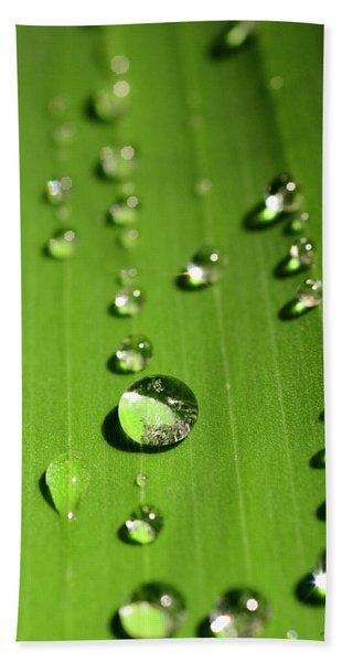 Water Drop On Green Leaf Hand Towel
