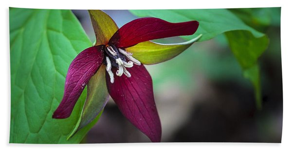 Red Trillium Bath Towel