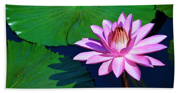 Pink Waterlily Hand Towel