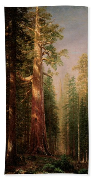 The Great Trees Mariposa Grove California Bath Towel