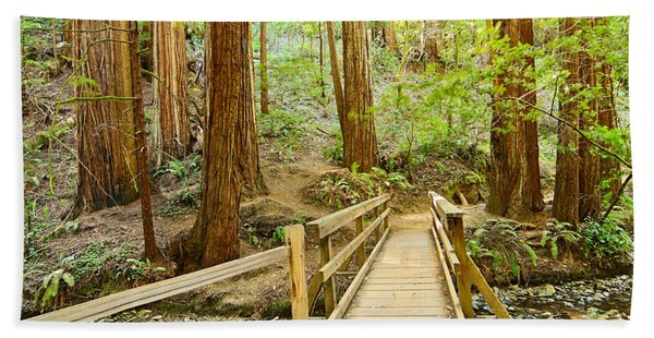 Redwood Forest Of Muir Woods National Monument. Bath Towel
