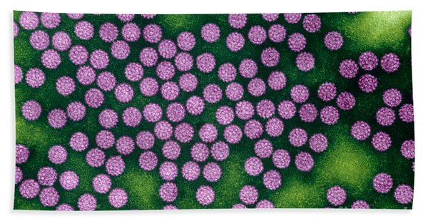 Human Papillomavirus Bath Towel