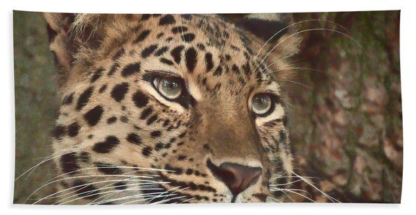 Amur Leopard Hand Towel