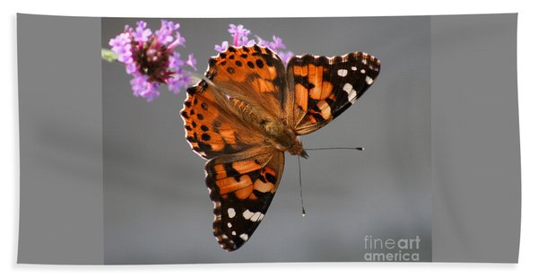 American Painted Lady Butterfly Hand Towel