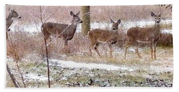 A Dusting On The Deer Hand Towel