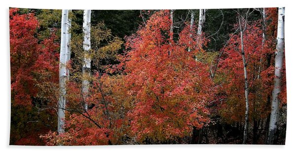 Aspen Glory Hand Towel
