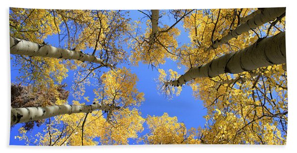 Aspens Skyward Bath Towel
