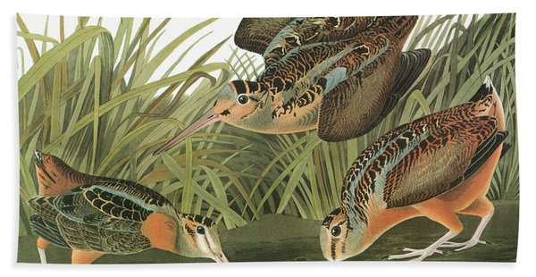 Audubon Woodcock Hand Towel