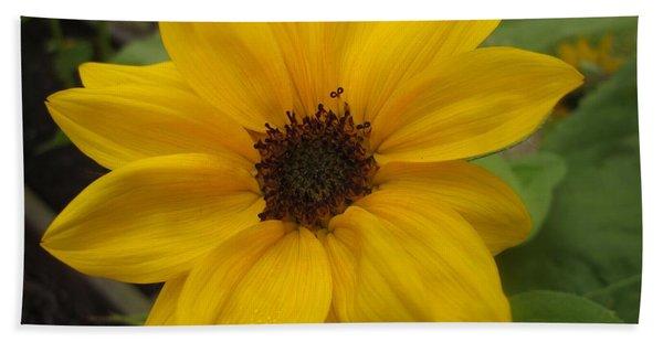Baby Sunflower Hand Towel