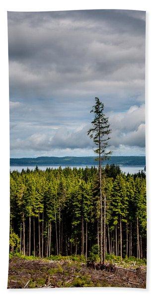 Logging Road Ocean View  Hand Towel