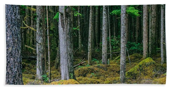 Inside View Backroad Forest Hand Towel