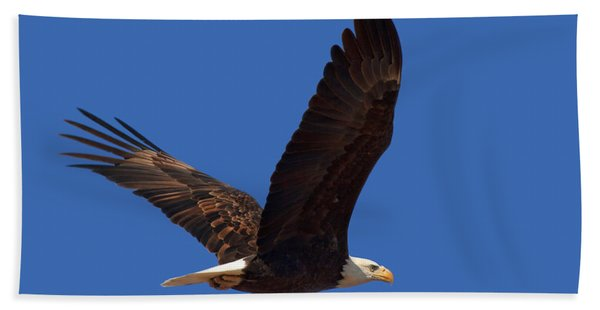 Bald Eagle Fly By Bath Towel