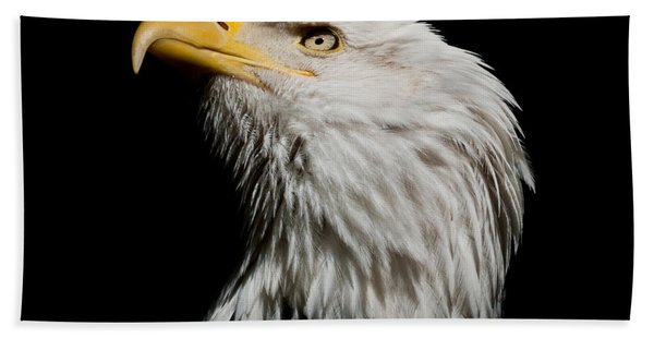 Bald Eagle Looking Skyward Hand Towel