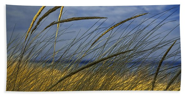 Beach Grass On A Sand Dune At Glen Arbor Michigan Hand Towel
