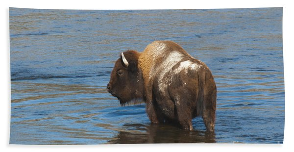 Bison Crossing River Bath Towel