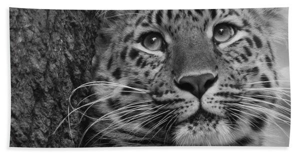 Black And White Amur Leopard Hand Towel