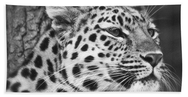 Black And White - Amur Leopard Portrait Hand Towel