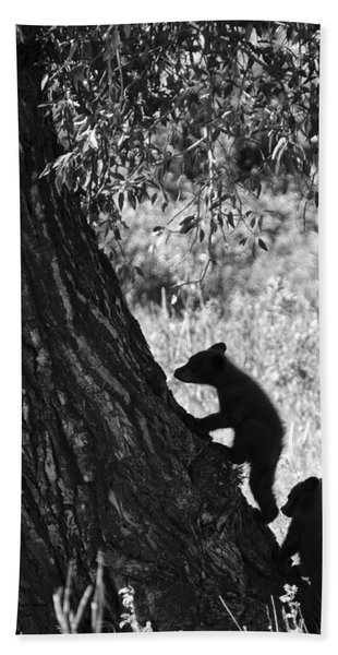 Black Bear Cubs Climbing A Tree Hand Towel