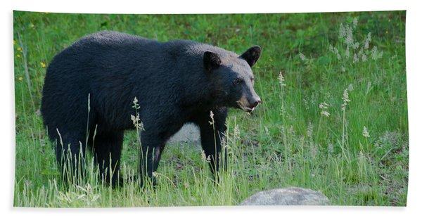 Black Bear Female Hand Towel