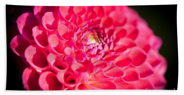 Blooming Red Flower Hand Towel