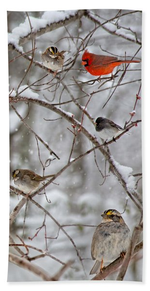 Blushing Red Cardinal In The Snow Hand Towel