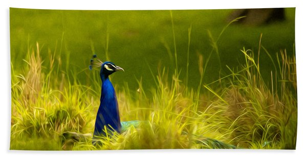 Bronx Zoo Peacock Hand Towel