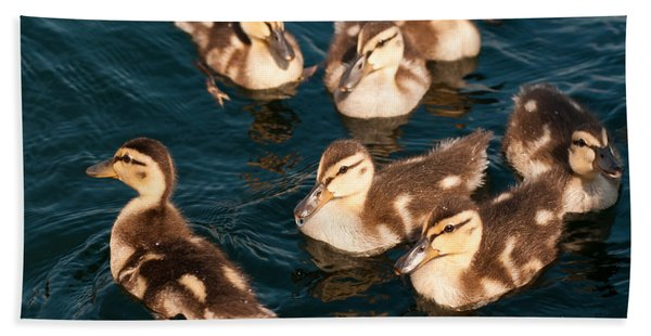 Brothers And Sisters Hand Towel