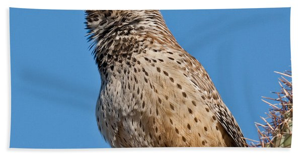 Cactus Wren Singing Hand Towel