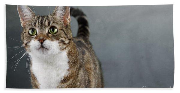 Cat Portrait Bath Towel