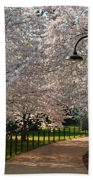 Cherry Blossoms 2013 - 060 Bath Towel