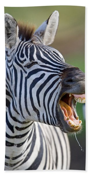 Close-up Of A Zebra Calling, Ngorongoro Hand Towel
