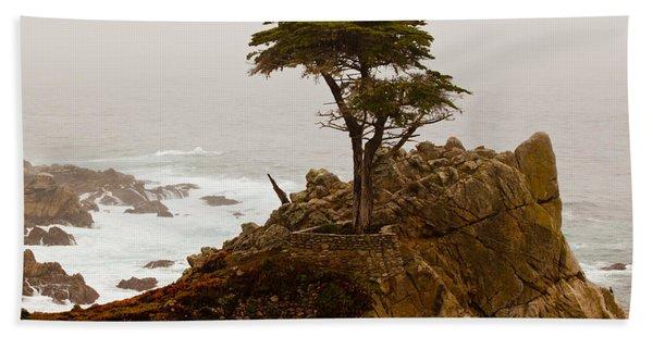 Coastline Cypress Hand Towel
