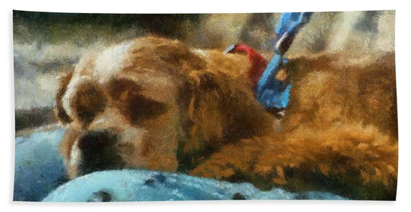 Cocker Spaniel Photo Art 07 Hand Towel