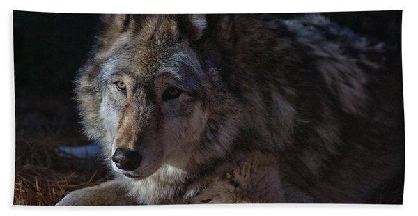 Colors Of A Wolf Bath Towel