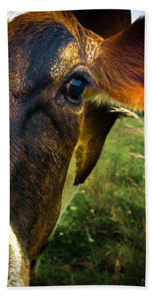 Cow Eating Grass Bath Towel