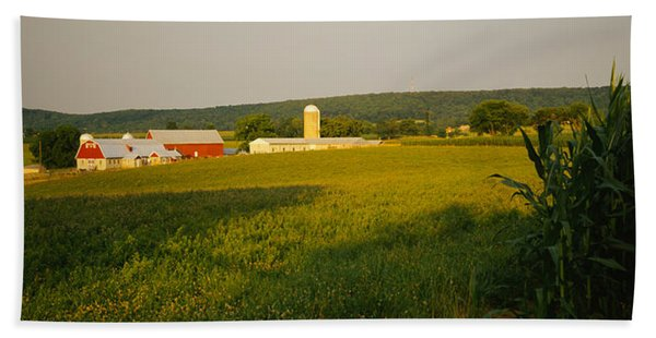 Crop In A Field, Frederick County Hand Towel