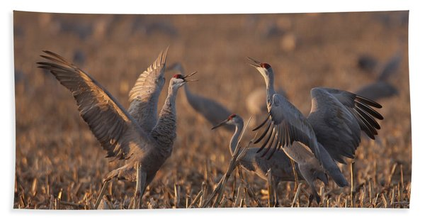 Dancing Sandhills Bath Towel