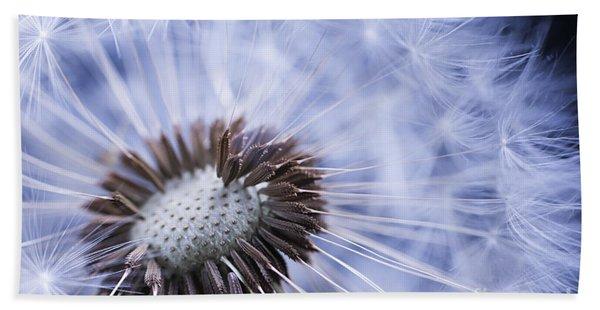 Dandelion With Seeds Hand Towel